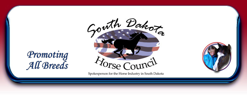 South Dakota Horse Fair.